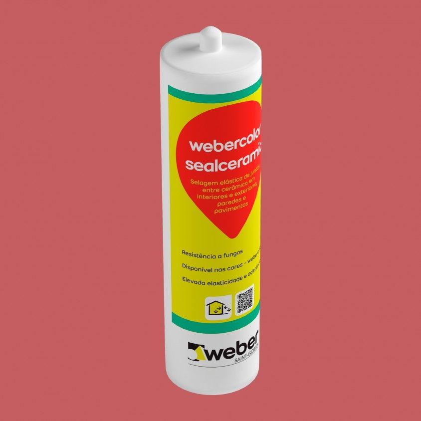Weber Color Sealceramic 310ml